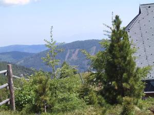 Almhaus Weißmann, Ferienwohnungen  Patergassen - big - 59