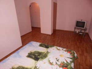 Apartment on Blyhera, 4/1, Appartamenti  Ufa - big - 1