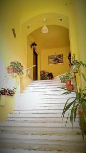 Fantasy Residence, Apartmanok  Brassó - big - 38