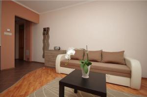 Magnólia Apartman, Ferienwohnungen  Gyula - big - 14
