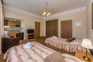 Aparthotel Lublanka, Отели  Прага - big - 90