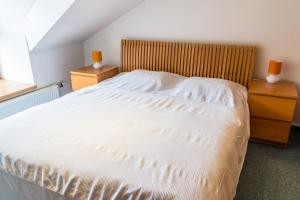 Apartment Poustevník, Apartments  Pec pod Sněžkou - big - 16