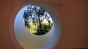Igloo with Garden View