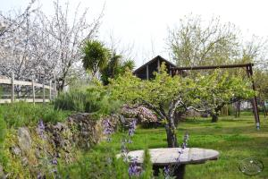 Agriturismo Dolcetna, Hétvégi házak  Sant'Alfio - big - 53