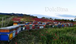 Agriturismo Dolcetna, Hétvégi házak  Sant'Alfio - big - 58