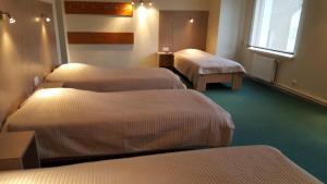 Hotel Gulbene, Hotel  Gulbene - big - 11
