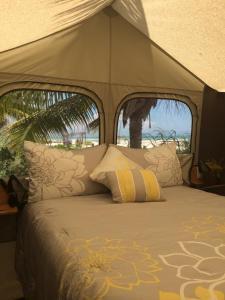 Rhincodon Typus, Hotels  Holbox Island - big - 4