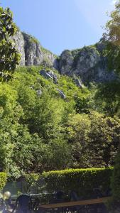 Trattoria I Bodega, Penziony  Abbadia Lariana - big - 30