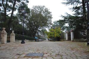 Villa Rosato, Appartamenti  Selva di Fasano - big - 141