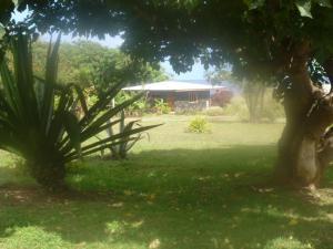 Cabaña Oreko, Prázdninové domy  Hanga Roa - big - 9