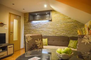 Apartments Josipovic, Appartamenti  Zlatibor - big - 19
