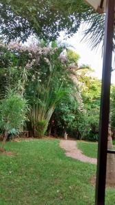 Hostel Chapada dos Veadeiros, Ostelli  Alto Paraíso de Goiás - big - 30