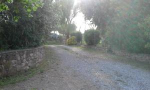 La Palma, Bauernhöfe  Magliano in Toscana - big - 29