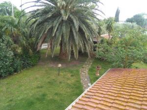 La Palma, Bauernhöfe  Magliano in Toscana - big - 4