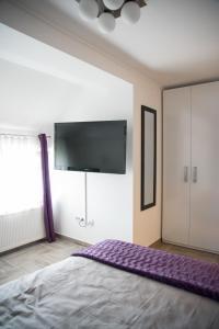 Sobe Novi grad, Affittacamere  Osijek - big - 4
