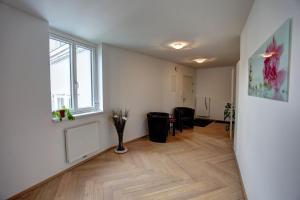 Gasser Apartments - Apartments Karlskirche, Apartmány  Viedeň - big - 50