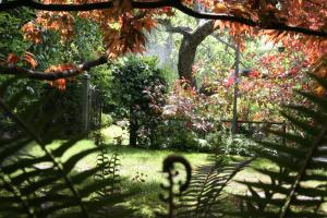 ThistleDown House, Bed & Breakfast  North Vancouver - big - 13