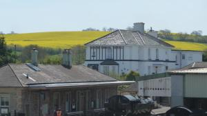 White Horse Guesthouse, Мини-гостиницы  Бриксем - big - 27
