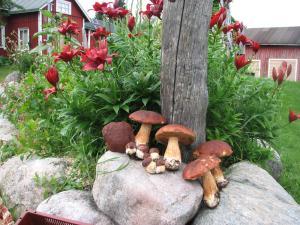 Ollilan Lomamajat, Holiday homes  Kuusamo - big - 187