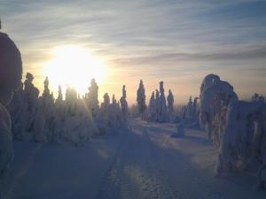 Ollilan Lomamajat, Nyaralók  Kuusamo - big - 173