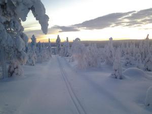 Ollilan Lomamajat, Nyaralók  Kuusamo - big - 172