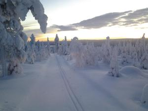 Ollilan Lomamajat, Holiday homes  Kuusamo - big - 172