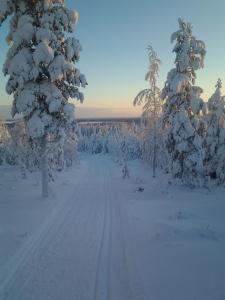 Ollilan Lomamajat, Holiday homes  Kuusamo - big - 196