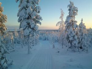 Ollilan Lomamajat, Holiday homes  Kuusamo - big - 162