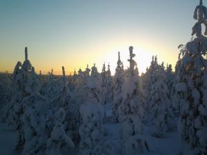 Ollilan Lomamajat, Nyaralók  Kuusamo - big - 155