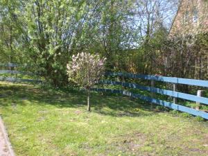 Ferienwohnungen Völschow-Hering Waabs, Appartamenti  Waabs - big - 127
