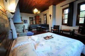 Amalthia Traditional Guesthouse, Penzióny  Tsagarada - big - 60