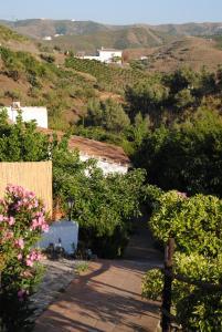 Cortijo Lagar de Luisa, Country houses  Borge - big - 31
