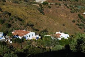 Cortijo Lagar de Luisa, Country houses  Borge - big - 29