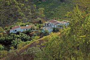 Cortijo Lagar de Luisa, Country houses  Borge - big - 85