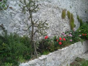 Little Rock Apartments, Appartamenti  Mostar - big - 84