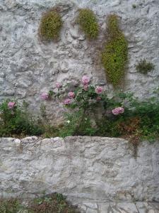 Little Rock Apartments, Appartamenti  Mostar - big - 85