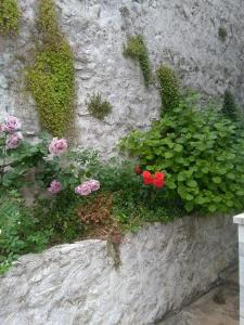 Little Rock Apartments, Appartamenti  Mostar - big - 86