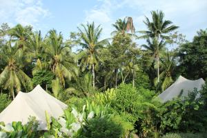 Sandat Glamping Tents (14 of 68)