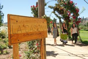 La Casona at Matetic Vineyards (8 of 23)