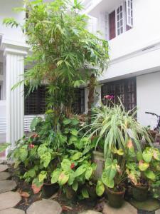 Bay Mansion Homestay, Homestays  Cochin - big - 13