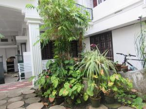 Bay Mansion Homestay, Homestays  Cochin - big - 25