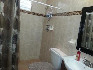Ocean View Suites Luquillo, Апартаменты  Лукильо - big - 9