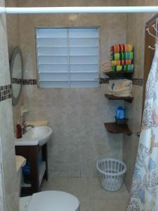 Ocean View Suites Luquillo, Апартаменты  Лукильо - big - 20