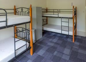 Blue Mountains Backpacker Hostel, Hostelek  Katoomba - big - 45