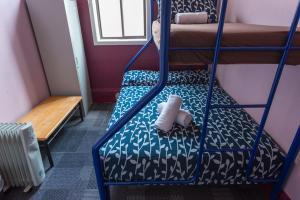 Blue Mountains Backpacker Hostel, Hostelek  Katoomba - big - 27