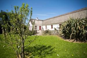 Rose Cottage, Дома для отпуска  Дулин - big - 16