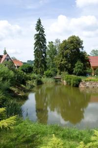 Auberge d'Imsthal, Hotely  La Petite-Pierre - big - 26