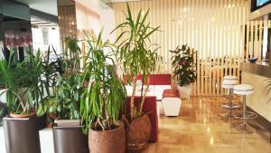 Hotel Trocadero, Отели  Риччоне - big - 77