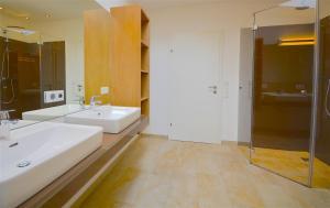 Apartment S&P 3 by Alpen Apartments, Ferienwohnungen  Zell am See - big - 21