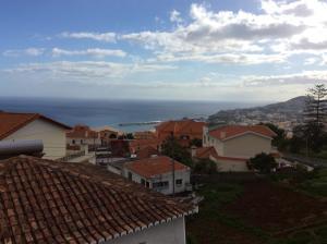 Vivenda da Ana e do Zé, Dovolenkové domy  Funchal - big - 10
